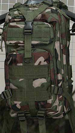 MOLLE 3P Assault Backpack – US Woodland
